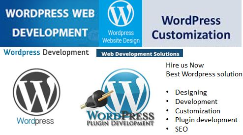 WordPress Website Design & Development